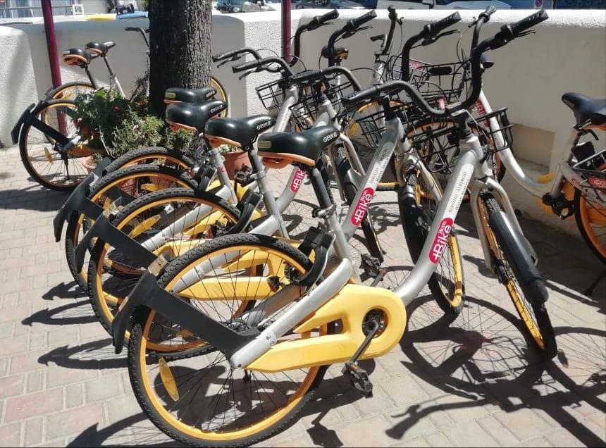biciclette a disposizione